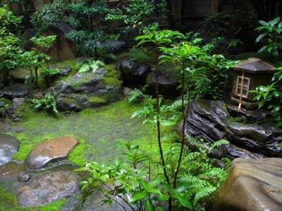 Zen Garden.thetwelvelawsofsantaclaus.com